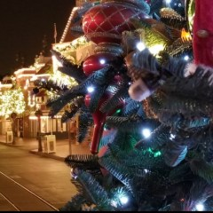PICTORIAL: Blocked Out at Disneyland? This Holiday Pictorial is your ticket back in for a #MerryChristmas