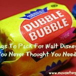 7 Things To Pack For Disney World You Never Knew You Needed