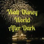 Disney Parks After Dark