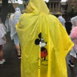 When The Rain, Rain Won't Go Away While You're At Walt Disney World