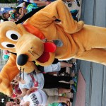Your Furry Friend Is Now Welcome At Select Walt Disney World Resorts