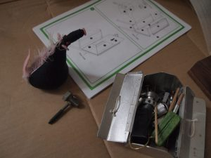 Fury looks at the instructions for some flat pack furniture