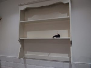 Fury sits on the shelf unit fitted to the wall.