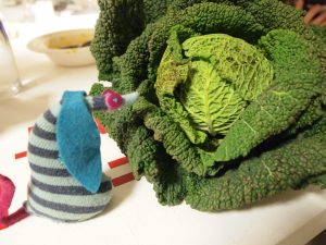 Ofelia looks at a savoy cabbage