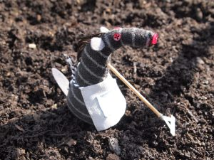 Bernard uses a tiny rake to till some soil
