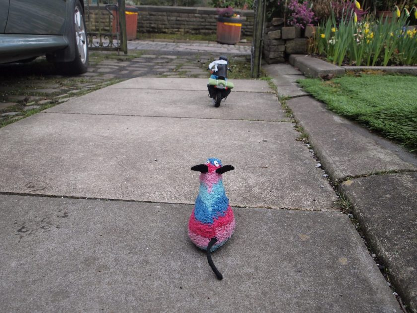 Ratvaark watches as Arnold drives off down the driveway