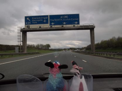 Ratvaark and Fury in the car look at a motorway sign for The North