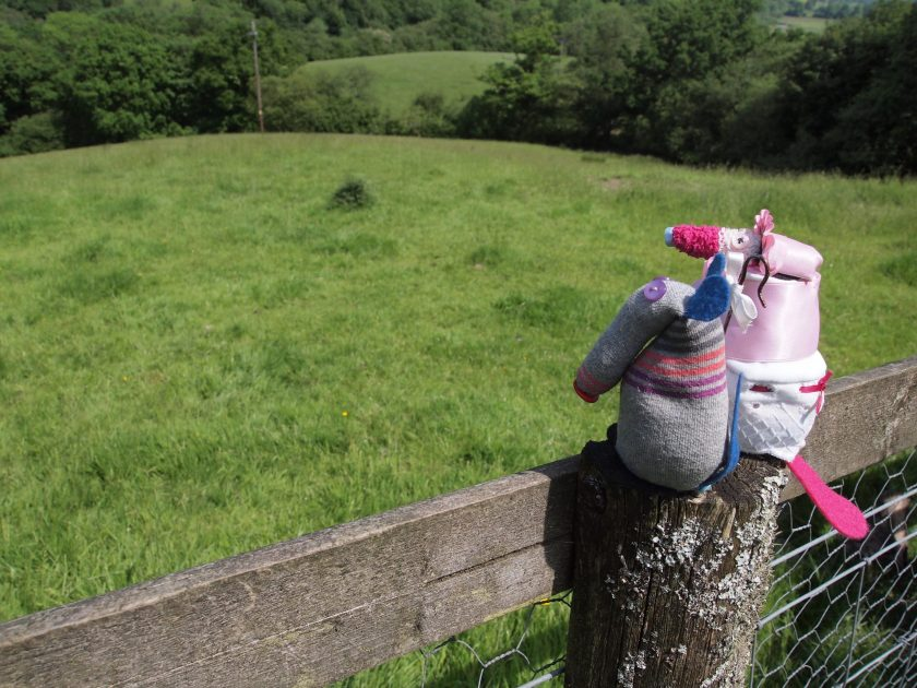 Matilda in her shepherdess outfit, and Dim, sit on a fence post looking at an empty field