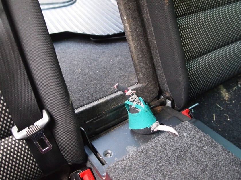 Fury looks through a fold down flap between rear seats and boot