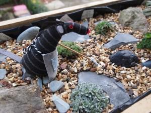 Bernard tends to his rock garden