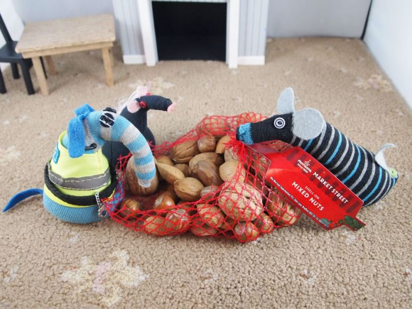 Hypno, Anold and Fury are looking at a net bag of nuts in shells