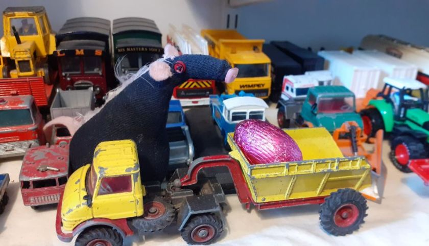 Fury looks at an egg in the back of a toy tipper truck on a shelf of toy cars