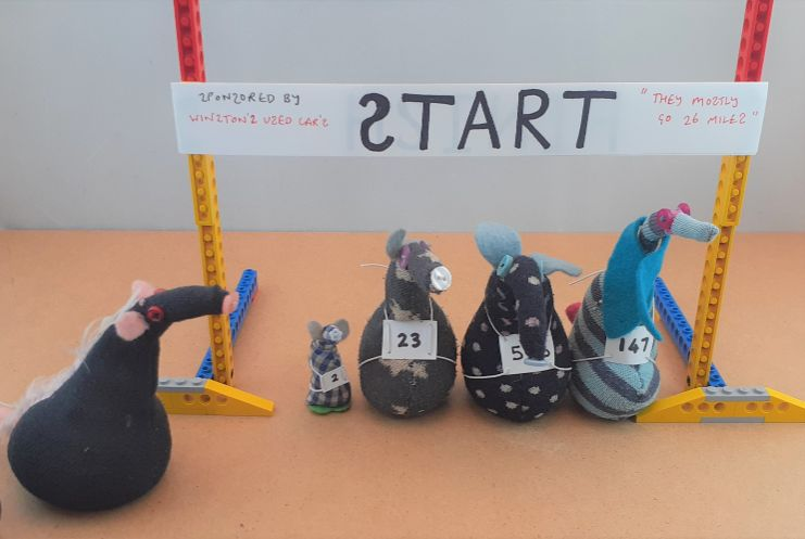 the competitors line up again