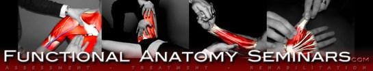 functional-anatomy-masthead