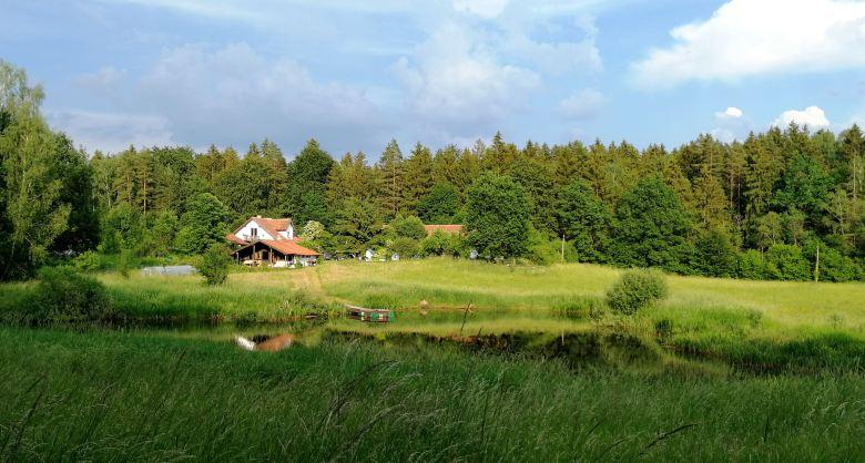 siedlisko-Olsztyn-Warmia-pokoje-las