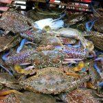 Kep Crab Market crab basket