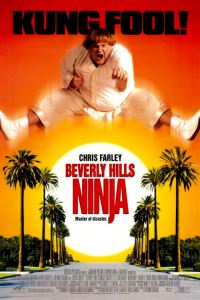 Beverly Hills Ninja movie review