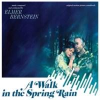 walk_spring_rain