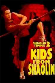 เสี่ยวลิ้มยี่ 2 Shaolin Temple 2: Kids from Shaolin (1984)