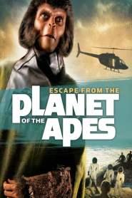 หนีนรกพิภพวานร Escape from the Planet of the Apes (1971)