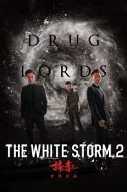 โคตรคนโค่นคนอันตราย 2 The White Storm 2: Drug Lords (2019)