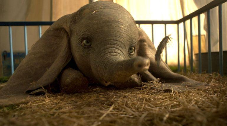 Immagine dal film Dumbo di Tim Burton su MovieDigger