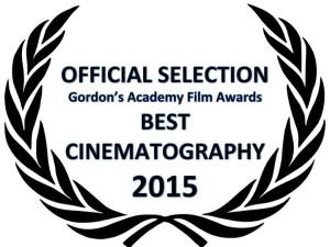 Nominees: The Grand Budapest Hotel, Interstellar, Mr. Turner, Birdman, Ida