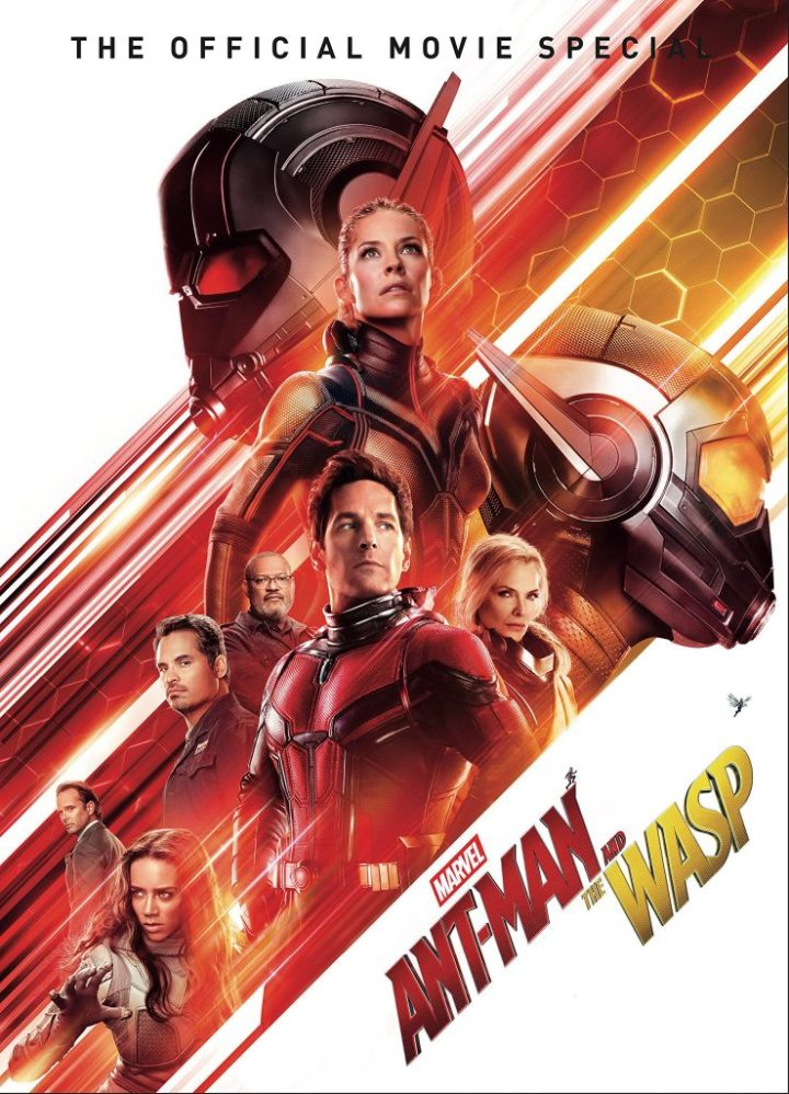 A1icPty19AL 739x1024 Ant Man and The Wasp