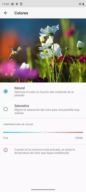 Moto Edge 20 Pro color options