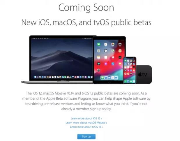 Instalar beta publica de iOS 12