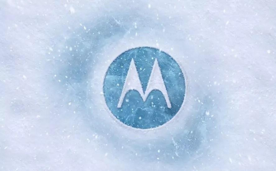 Motorola Logo nieve
