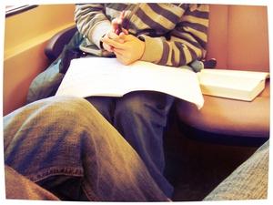 Wantrouw elke drijfveer tot schrijven, behalve de vreugde van het formuleren. Godfried Bomans