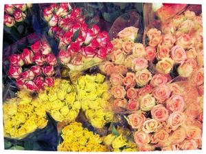 Achting is voor de deugd, als een koesterende lucht voor planten en bloemen, die ze doet bloeien en gedijen. E. F. L. Wood, Lord Halifax