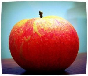 Men is wel geneigd te zeggen dat de appel niet ver van de boom valt, maar het bestaat toch niet dat de appel juist dezelfde boom wordt. Louis Paul Boon