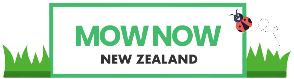 mow now new zealand lawn mowing
