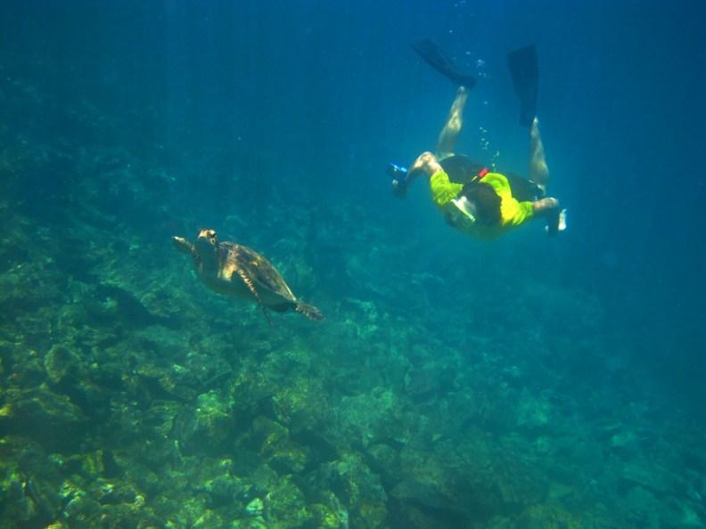 Ecuador Galapagos Snorkel