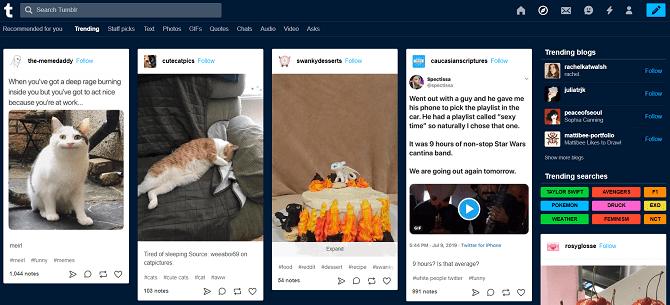 Onglet Explorer de Tumblr