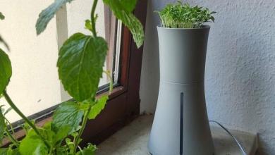 Photo of Botanium: Jardinage urbain pour tous