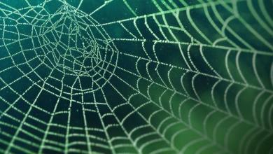 Photo of 6 mythes du Dark Web démystifiés: les vérités derrière eux