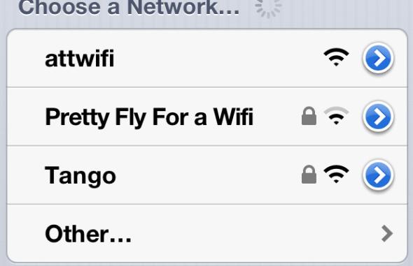 Schöne Fliege für ein WiFi