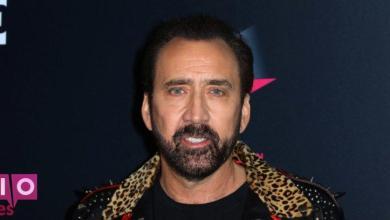 Photo of Nicolas Cage joue Joe Exotic dans une nouvelle émission de télévision Tiger King, bien sûr
