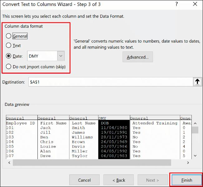 Confirmez les options de mise en forme de la colonne, puis cliquez sur Terminer pour confirmer le processus de conversion du texte en colonne dans Excel