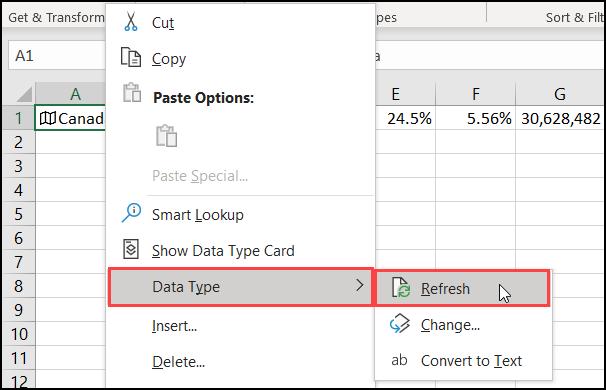 """Cliquez sur """"Type de données"""", puis cliquez sur """"Actualiser""""."""