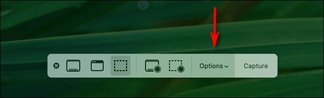 Cliquez sur le bouton Options dans la barre d'outils de capture d'écran Mac