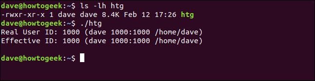 """Les commandes """"ls -lh htg"""" et """"./htg"""" dans une fenêtre de terminal."""