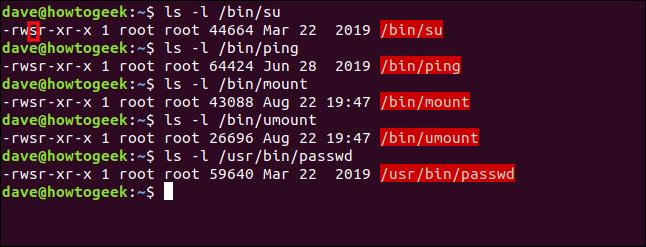Une liste de commandes Linux dont le bit SUID est défini dans une fenêtre de terminal.