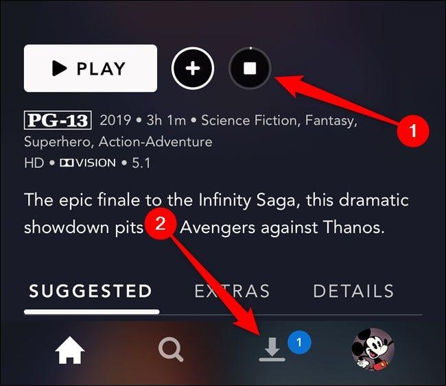 Aplicación Disney + Seleccione la pestaña Descargas
