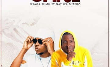 Msaga Sumu ft Nay Wa Mitego (Mr. Nay) - Kitu Gani