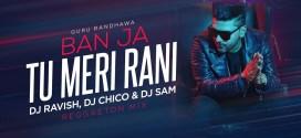 Tumhari Sulu – Ban Ja Rani – DJ Ravish & DJ Chico
