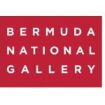 Bermuda Biennial Finalist